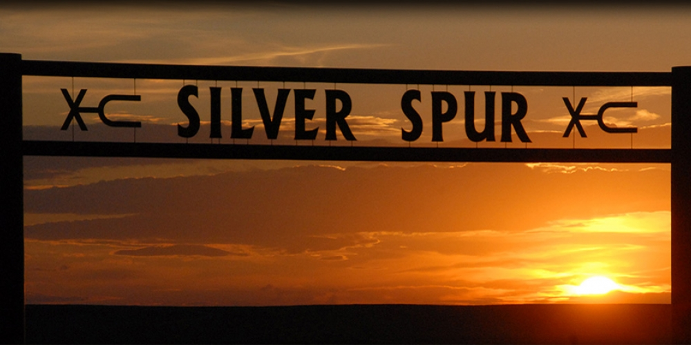 Silver Spur Ranches