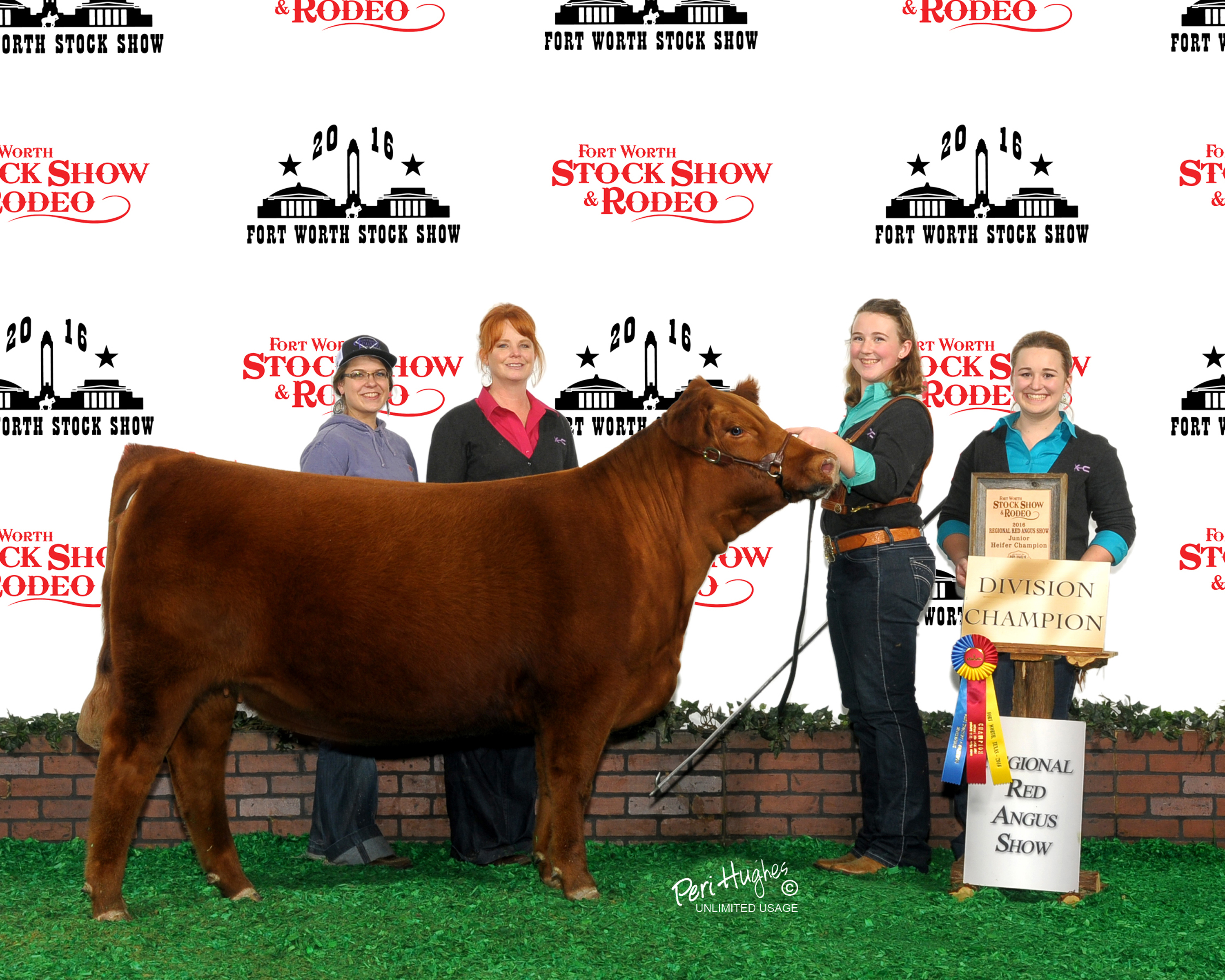 2016 Stock Show Stand Outs Silver Spur Ranches